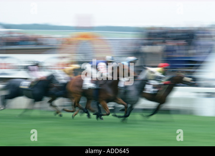 Horseracing action at Epsom Races in Surrey United Kingdom on the famous Derby Day - Stock Photo