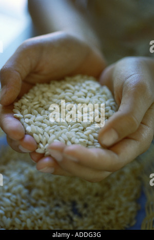 Cupped hands holding rice - Stock Photo