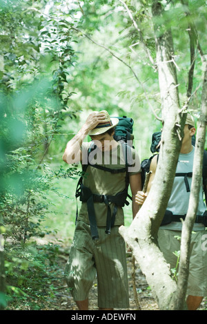 Two hikers walking through forest - Stock Photo