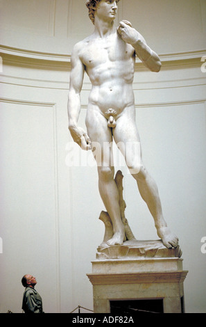 Michelangelos David is viewed by a visitor to the Academy Gallery in Florence Italy - Stock Photo