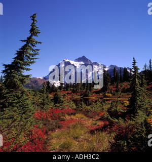 Mt Shuksan above 'Heather Meadows' Alpine Meadow in Mount Baker - Snoqualmie National Forest Area, Washington USA - Stock Photo