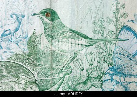 Cyprus Warbler bird pattern on Cyprus ten pounds bill - Stock Photo