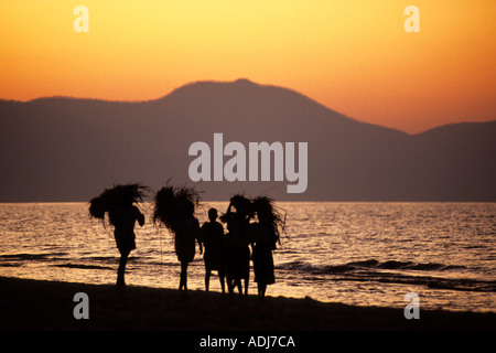 Mahale, Tanzania. Group of people walking beside Lake Tanganyika carrying fodder on their heads at sunset. - Stock Photo