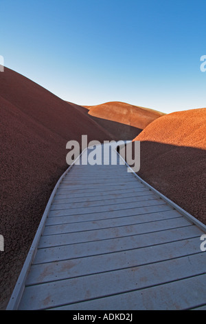 Desert Walkway - Stock Photo