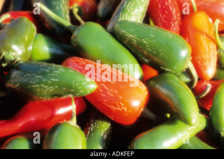 Close-up of red and green peppers - Stock Photo