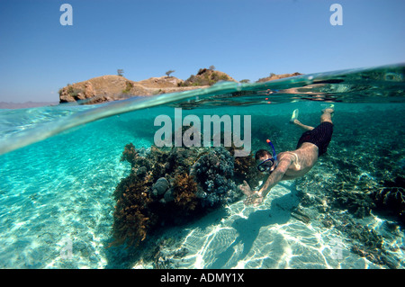 Bright bay snorkeler - Stock Photo