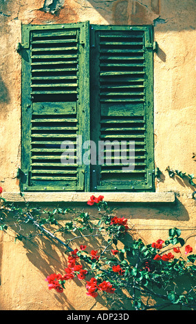 Green Shuttered Window in Provence France - Stock Photo