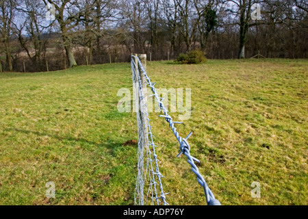 Barbed wire fence in Oxfordshire field Bruern The Cotswolds United Kingdom - Stock Photo