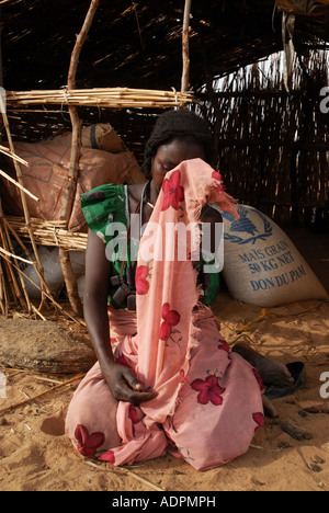 Africa.Chad.Goz Bagar camp for displaced .Widow Mariam Issak Adam aged 30 mother of 4 - Stock Photo