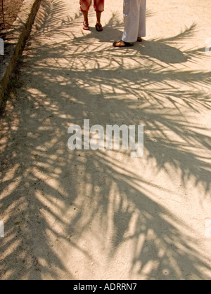 A cropped view of two peoples legs and feet standing in the shade of a palm  tree - Stock Photo