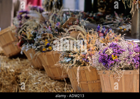 Baskets of herbs  - Stock Photo