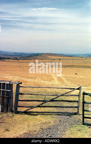 Five barred gate and fields of stubble after barley crop has been harvested Near Timau on north side of Mount Kenya - Stock Photo