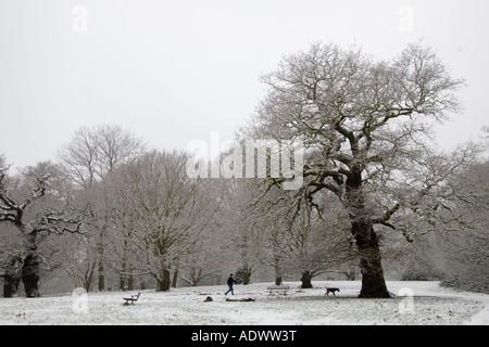 Man walks dog across snow covered Hampstead Heath North London England United Kingdom - Stock Photo