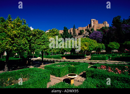 Ruins Of A Fort, Alcazaba, Malaga, Andalusia, Spain Stock Photo, Royalty Free...