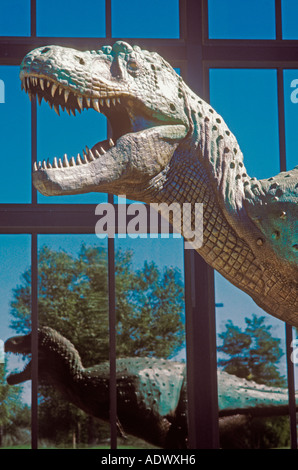 Tyrannosaurus rex  Museum of Natural History Old Town Albuquerque New Mexico - Stock Photo