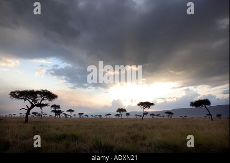 An approaching storm at sunset over the Masai Mara game reserve in Kenya East Africa - Stock Photo