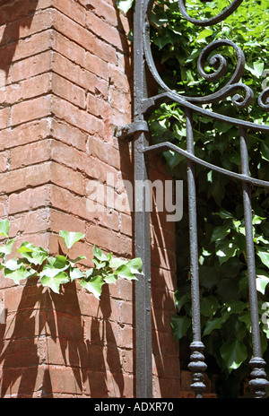 tree growing by wrought iron gate  - Stock Photo