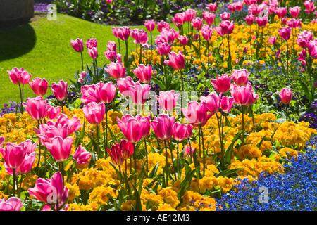 Florists In Oldfield Park Bath florists in bathInterflora Flower
