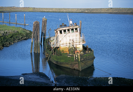 The wreck of an old fishing boat in the Gold Beach Harbor near the mouth of the Rogue River in Oregon. - Stock Photo