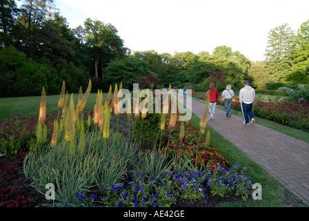 Ordinaire ... Longwood Gardens Near Philadelphia Flowers Philadelphia Pennsylvania PA  USA   Stock Photo