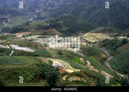 Steep rice terraces in the Muong Hoa Stream Valley near Sapa north Vietnam - Stock Photo