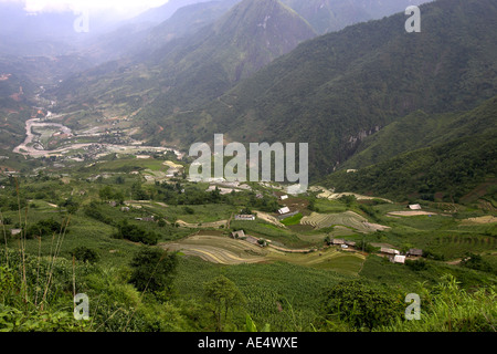 Rice terraces and cultivated fields in the misty Muong Hoa Stream Valley near Sapa Vietnam - Stock Photo