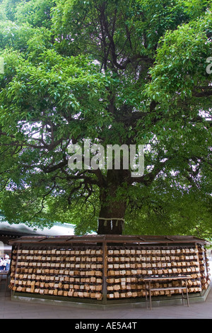 Rack with wooden votive plaques called ema surrounding giant tree at Meiji Jingu shrine in Tokyo, Japan. - Stock Photo