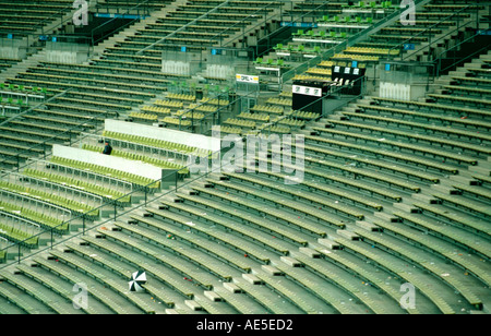 silhouette of a person in an empty stadium with litter and a lost umbrella Olympic Main Stadium Munich Bavaria Germany - Stock Photo