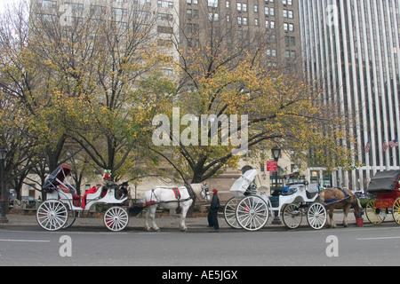 Horse drawn carriages waiting for customers in near Central Park in New York City in winter - Stock Photo
