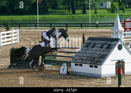 Woman rider on paint horse jumping over double barrier in show jumping competition at Kentucky Horse Park in Lexington - Stock Photo