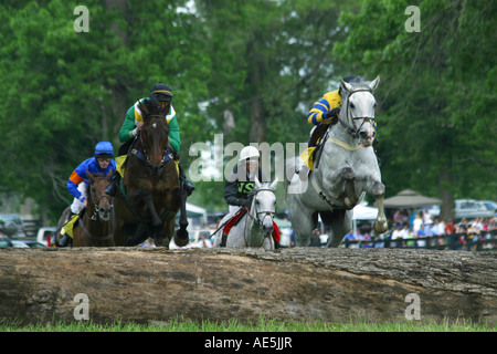 Horses jumping over a log in a steeplechase race - Stock Photo