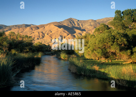 owens river and the eastern slope of the sierra nevada in california stock photo royalty free. Black Bedroom Furniture Sets. Home Design Ideas