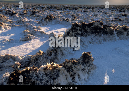 Sunrise light on evaporated salt pans at Devils Golf Course Middle Basin Death Valley California - Stock Photo