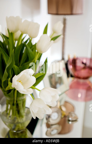 white tulips in a glass vase - Stock Photo