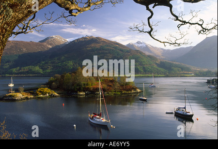 Spring evening sunshine on yachts at anchor on Loch Leven near Ballachulish UK - Stock Photo