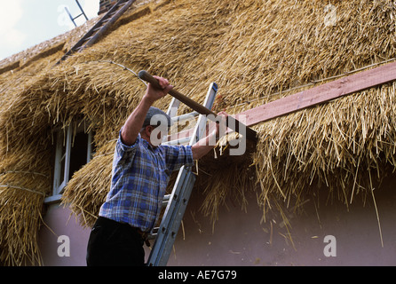 Traditional thatch roof on refurbished cottage nearing completion Suffolk England - Stock Photo