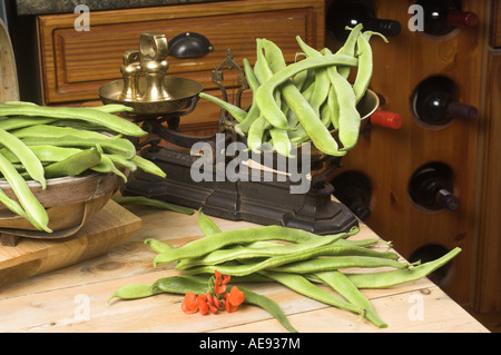 Home grown runner beans in a traditional country kitchen with rustic scales - Stock Photo