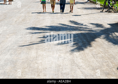 a cropped view of four peoples legs walking away from viewer along a sunny promenade - Stock Photo