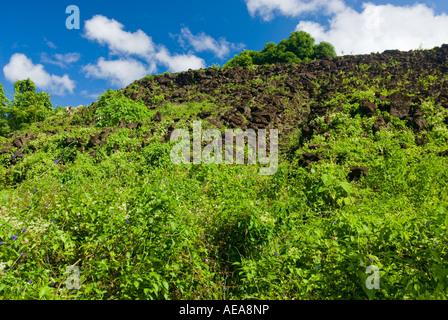 Pulemalei ancient star mound SAMOA SAVAII tropical rainforest - Stock Photo