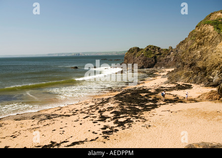 UK Devon Outer Hope Shippen beach - Stock Photo
