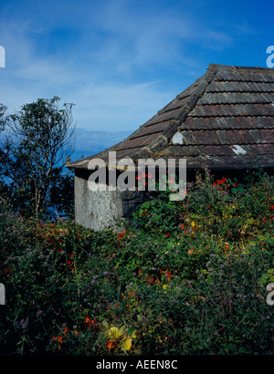 old traditional house at Arco da Calheta Madeira Portugal Europe. Photo by Willy Matheisl - Stock Photo