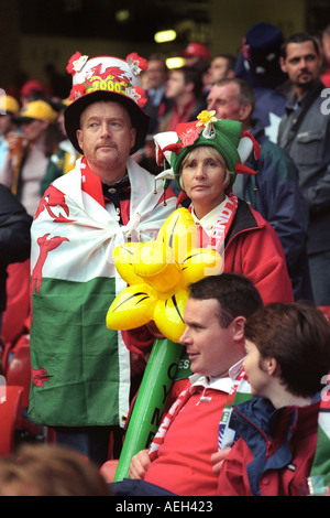 Welsh rugby fans wearing fancy dress in the Millennium Stadium Cardiff Wales UK for a Wales international match - Stock Photo