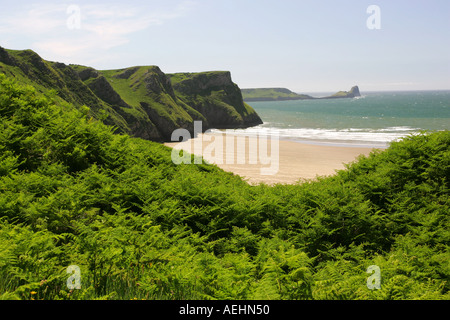 Lush green ferns golden sandy beach and Worms head peninsular viewed from Rhossili downs Gower South Wales Britain - Stock Photo