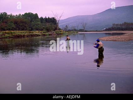 salmon angling fly fishing on the Margaree River Cape Breton Nova Scotia Canada - Stock Photo