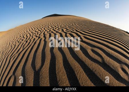 Ripple, sand dunes, Maspalomas, Gran Canaria, Spain - Stock Photo