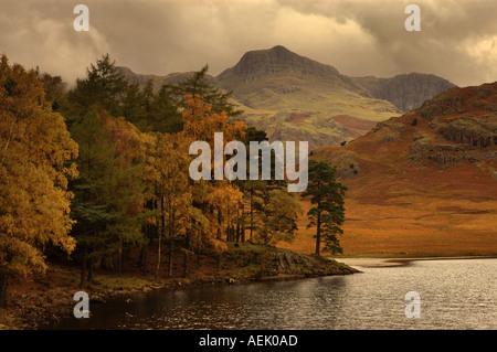Autumn at Blea Tarn Cumbria England UK - Stock Photo