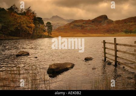 Blea Tarn Cumbria England UK - Stock Photo