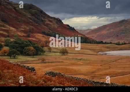 View toward Blea Tarn from near Side Pike Cumbria England UK - Stock Photo
