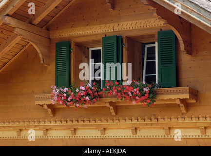 Window boxes Adelboden Frutigen Bern Switzerland - Stock Photo