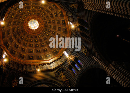 The dome inside the Cathedral of the Assumption in Siena Italy - Stock Photo
